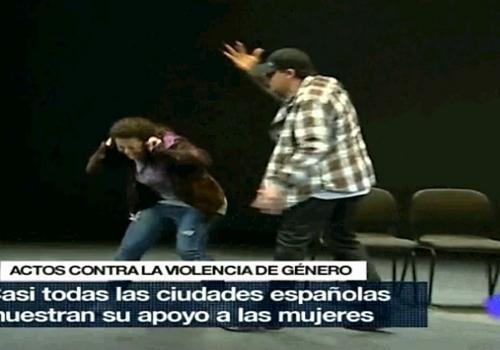 VIOLENCIA DE GÉNERO - LA DECISIÓN
